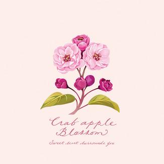 [Kim-su-yeon]Crabapple-Blossom-#1