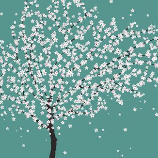 [Iamastar]Spring-day-A