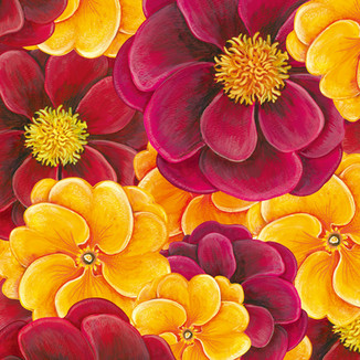 [Yoanna]Peony-Primula(Shy,-hope-of-boyhood)
