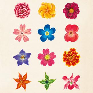 [Yoanna]Flower1