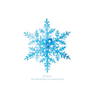 [J]Snow-flake