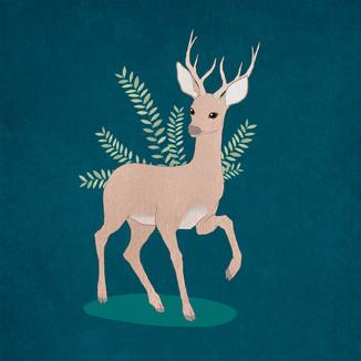 [May]Pink-deer
