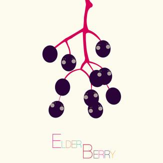 [Hyejung]Elder-Berry