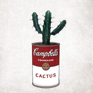 [May]Campbell-cactus