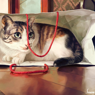 [Kirel]Cat-in-the-bag