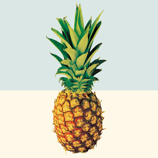 [iamastar]PinepineB