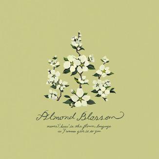 [Kim-su-yeon]Almond-flower-1
