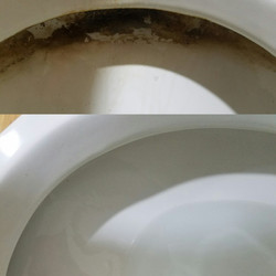 Before & After (Toilet 3)