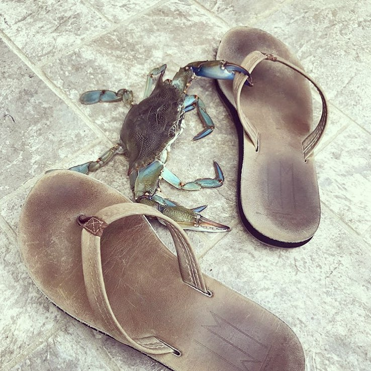 WM Sandals with Crab