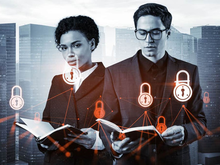 What is the role of a Data Protection Officer?