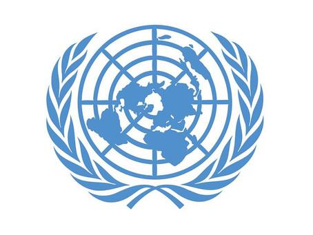 «Стимул» направил очередной доклад в Организацию Объединенных Наций