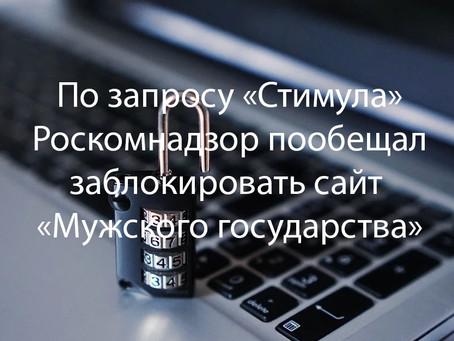 Роскомнадзор пообещал заблокировать сайт «Мужского государства»