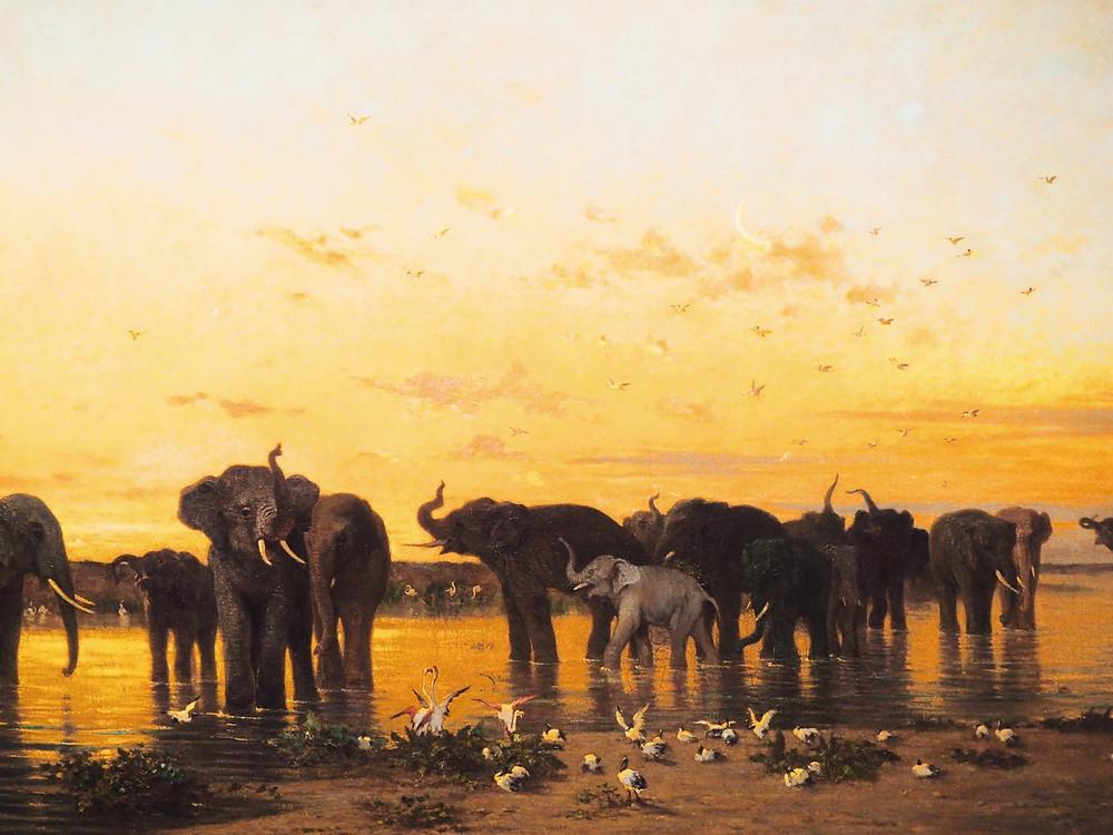 Eléphants d'Afrique, by Charles Emile de Tournemine
