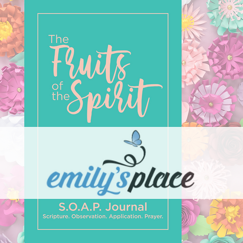 Donate a Journal to Emily's Place