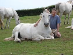 hästar 202