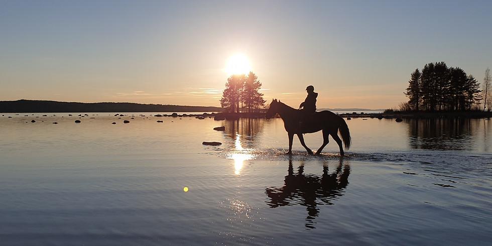 Turridning -  Bada med hästar Lördagar 19-21.30