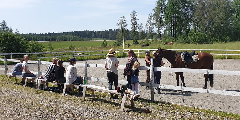 Föreläsning Häst& Ryttarutveckling 8 maj