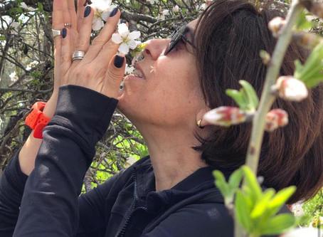 אהבה בימי קורונה מאת ענת שנקר - בלוג אישי לסיכום עשרה שבועות של שיכרון חושים עם דליה קולדהם
