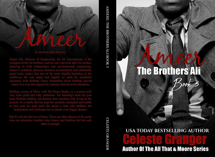 Ameer: The Brothers Ali Book 5