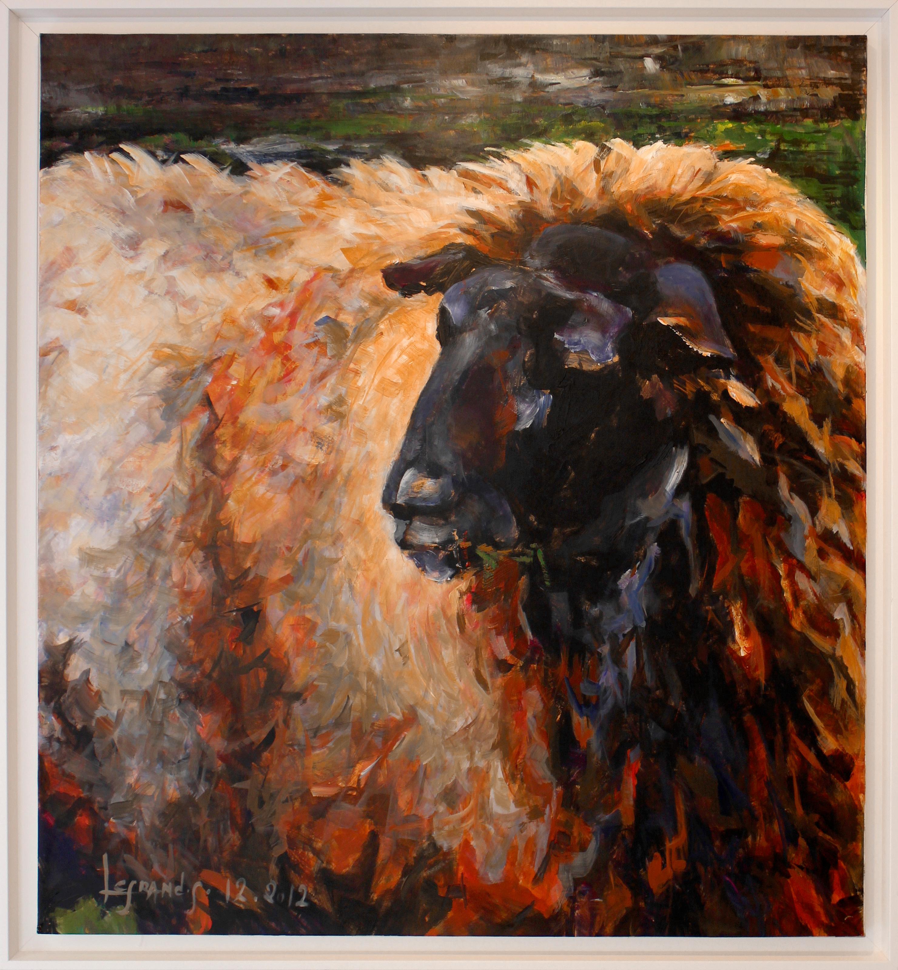 La gueule noire - le mouton