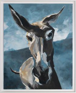 L'âne solitaire