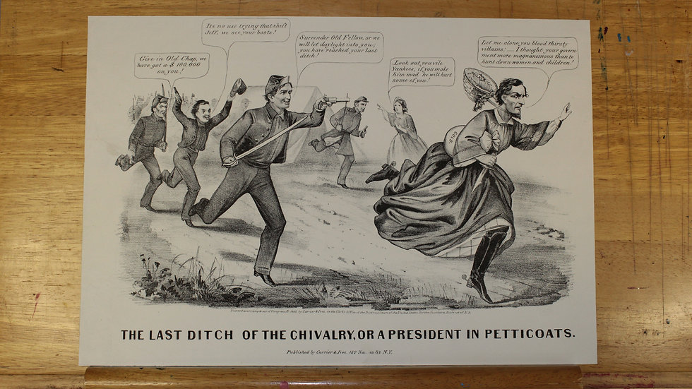 The Last Ditch of the Chivalry, or President of the Petticoats