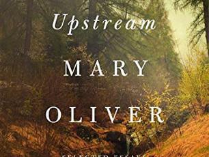 Mary Oliver's Quiet Revolution