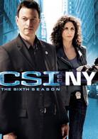 CSI_NY_Season_61.jpg