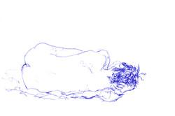 tekeningen (29 van 31).jpg