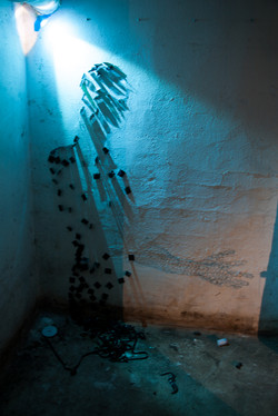 cellarium (5 van 15)-2.jpg