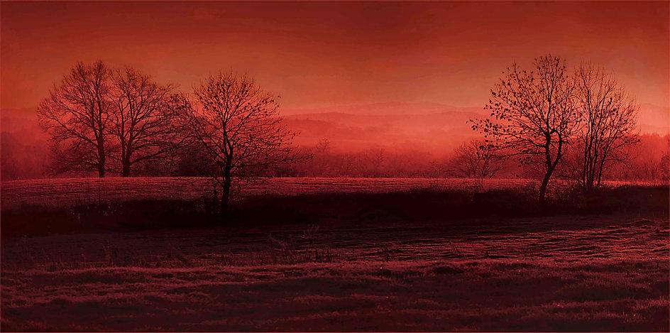 image paysage.jpg