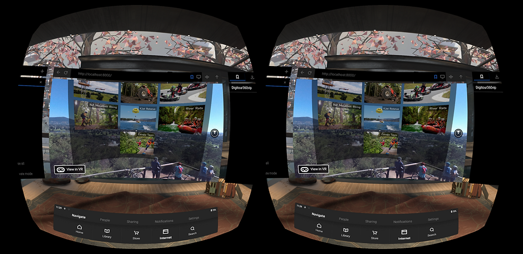 A2 VR HMD View VR device.png