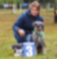 Дрессировка собак Набережные Челны