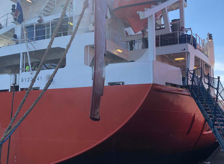 Container feeder loses hinge pin of the rudder