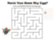HYSME-Maze.jpg