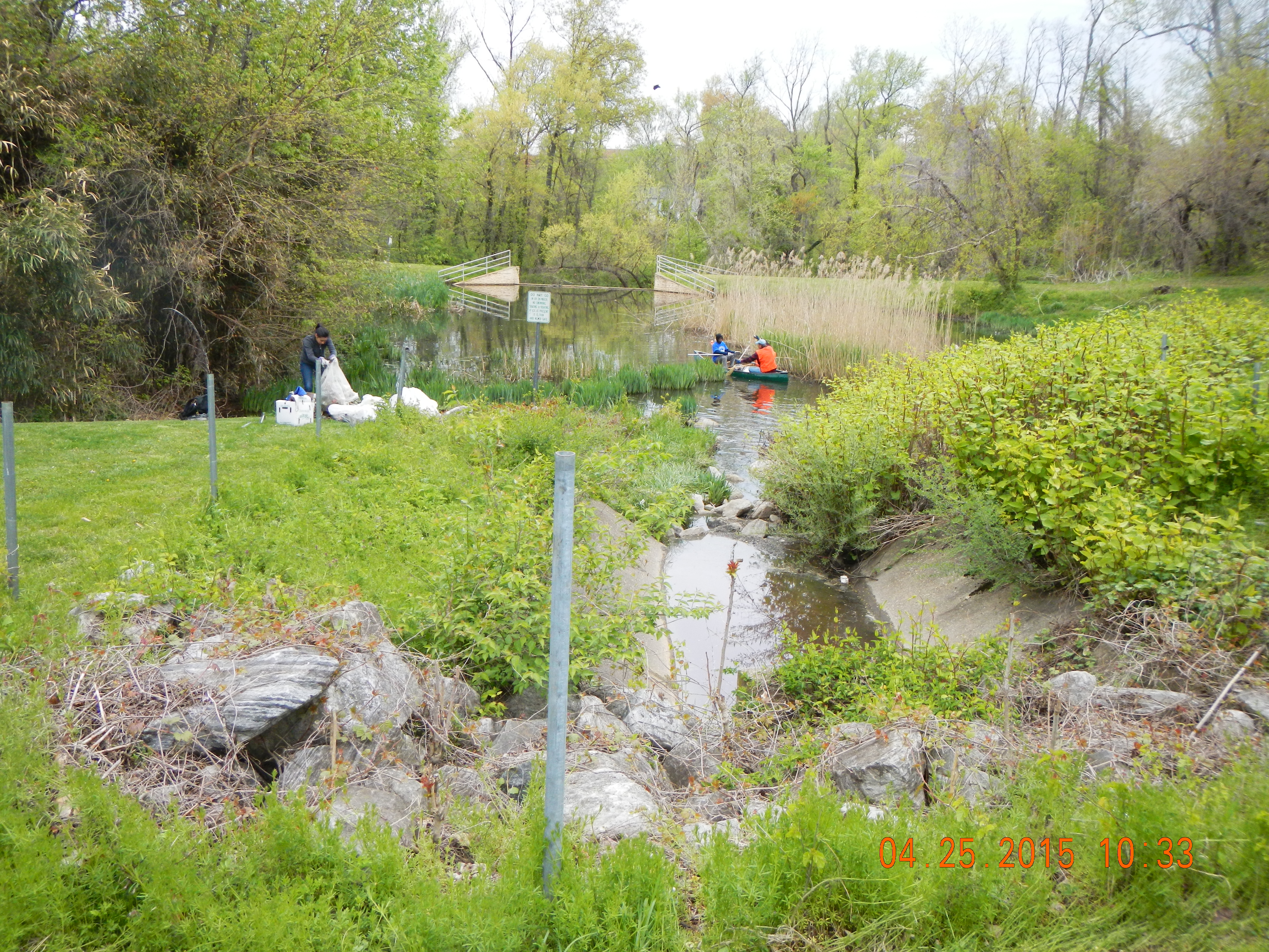 Storm water pond site