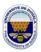 Universite de Douala.jpg