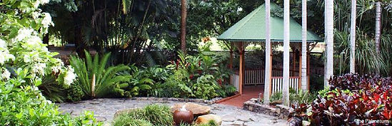 palmetum.JPG