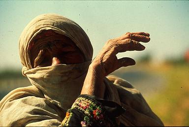 מצלמה ללא גבולות, ורדה פולק סאם, ירדן-ישראל
