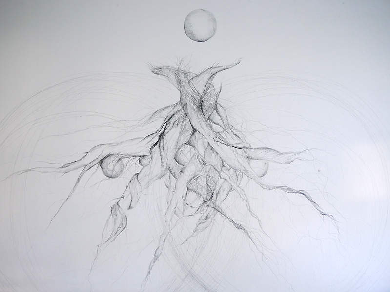 Roots, Wall drawing, 2020, Elinor Sahm.p