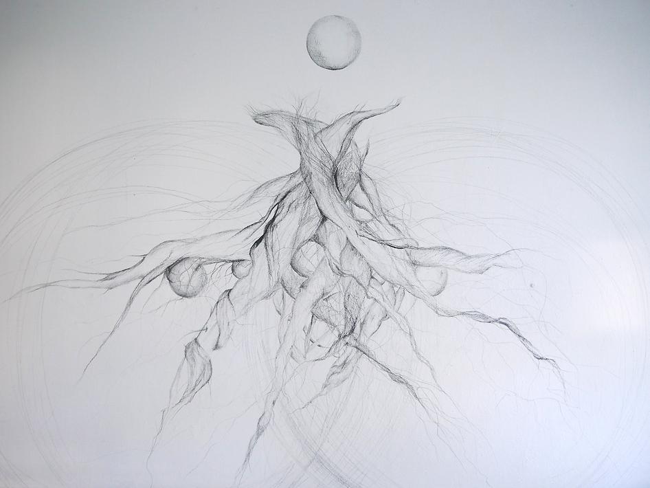 Roots, Wall drawing, 2020, Elinor Sahm.p