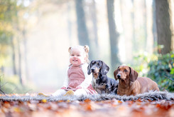 Tessa met hondjes