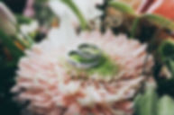 Wedding rings on flower