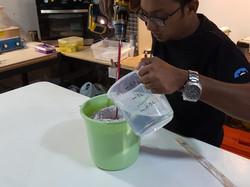 Mix Alginate Rubber