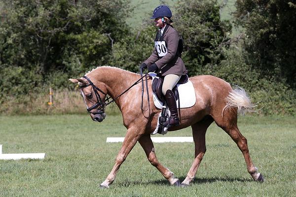 TumpyGreenODE-200820-Dressage-1643.jpg