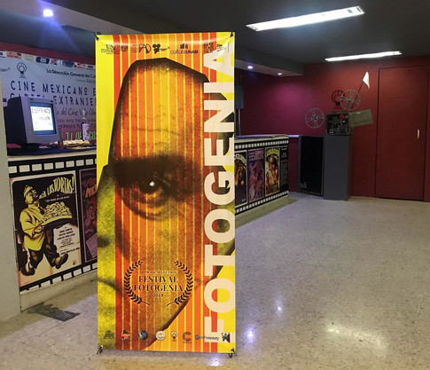 Fotogenia Festival, Mexico city