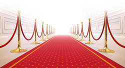 TOTAL RED CARPET PACKAGE - $250