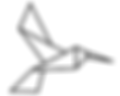 kolibre_3.png