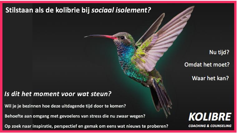 digiflyer_kolibre_032020.png