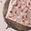 Thumbnail: Atelier Brunette - Windy Maple